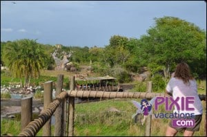 Disney Wild Africa Trek Tour