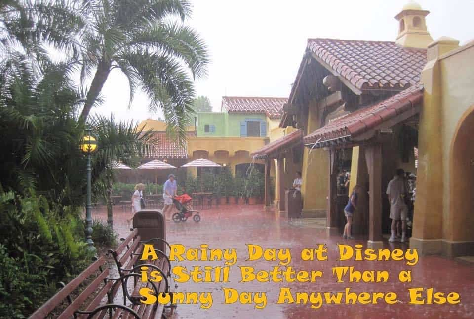 Disney World Weather - Rain