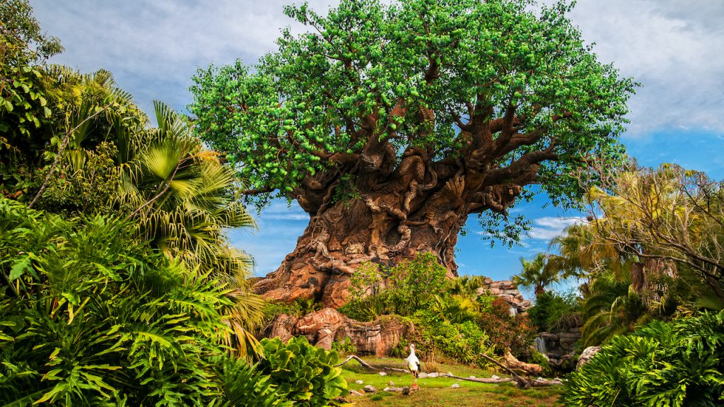 Disney Animal Kingdom Earth Month