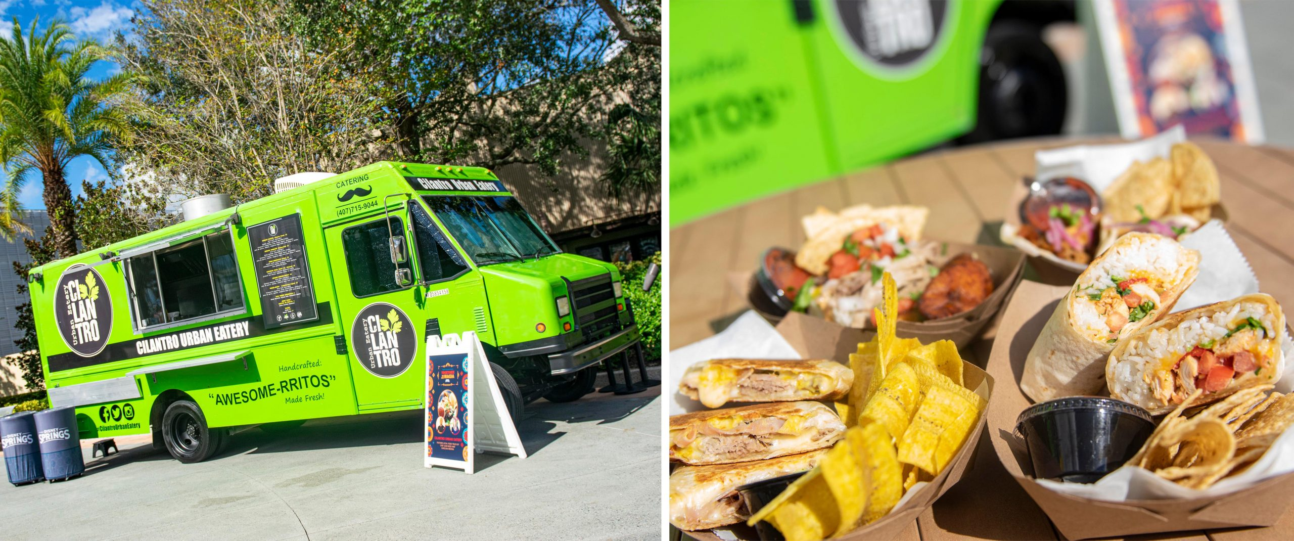 Together We Are Magia Food Trucks Disney